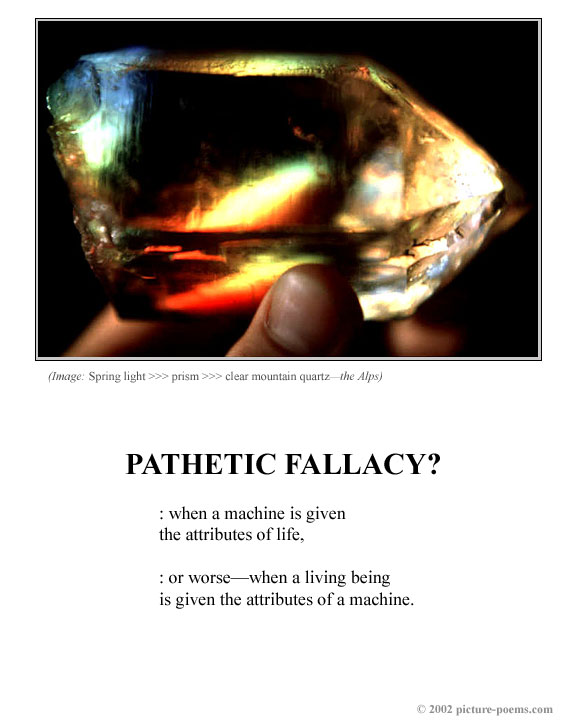 pathetic fallacy definition Pathetic see definition of pathetic adjsad, affecting  pathetic fallacy (1856, first used by ruskin) is the attribution of human qualities to inanimate objects.